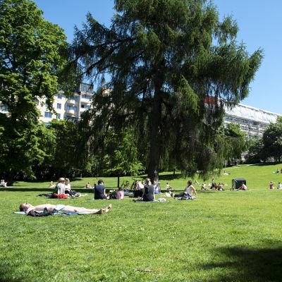 Kuvassa on Sinebrychoffin puisto, missä ihmiset ottavat aurinkoa ja nauttivat hellepäivästä.