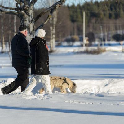 Äldre par ute och går med terrier.