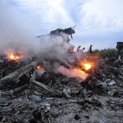 Brinnande rester av det malaysiska passagerarplanet MH17 i närheten av Donetsk 17.7.2014