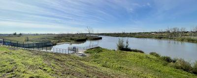Dammar och våtmarker reglerar vattenflödet vid Scheldeflodens mynning, strax utanför Antwerpen.
