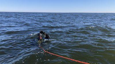 En dykare guppar i havet.