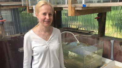 Kvinna vid akvarium.