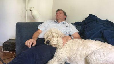Stefan ligger i soffan med slutna ögon. På honom ligger en stor lurvig hund.