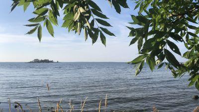 Utsikt från holme mot havet