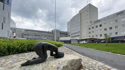 I förgrunden en staty som ligger nerböjd. I bakgrunden en sjukhusbyggnad.