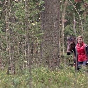 Nainen ja hevonen metsässä