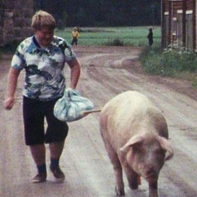 Esa Sosunow Läskilinssi ja sika sippurahäntä -jaksossa 1977