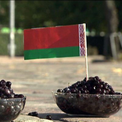 Mustikkakulhot, joissa Valko-Venäjän ja Guatemalan liput