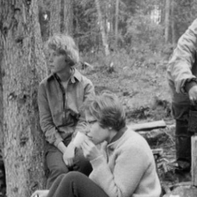 Kaksi naista ja mies retkeilevät metsässä.