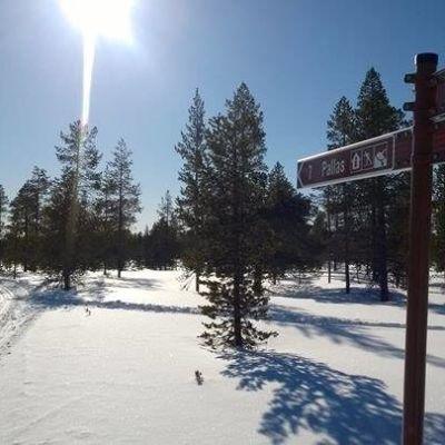 Pallastunturin hiihtoladut kevättalven auringossa.