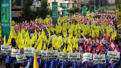 En lång demonstration med gula Hizbollah-flaggor och rödvita Libanon-flaggor.