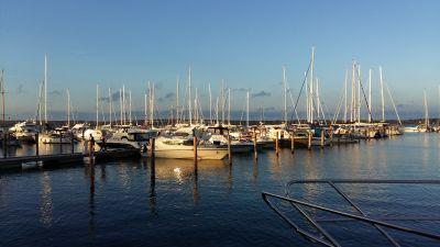 Båtar ligger i småbåtshamnen i solnedgången.