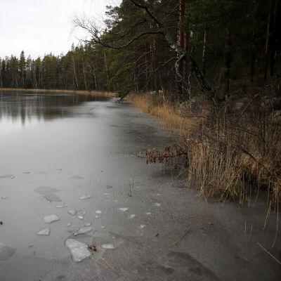 Skukulträsket i Lovisa