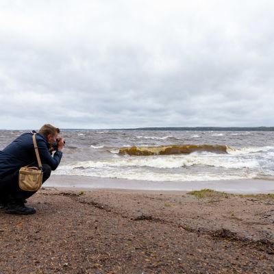 Myrskybongareita rannalla