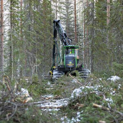 Metsäkone katkontahommissa metsäpalstalla Kuhmossa.