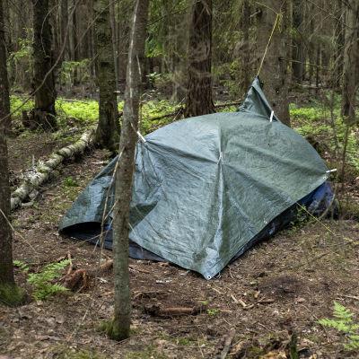 Metsän keskellä pressun alla oleva teltta