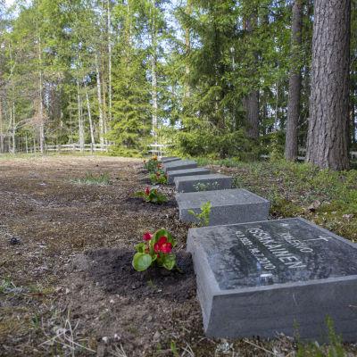 Hautakiviä Rauhan sairaalan hautausmaalla.