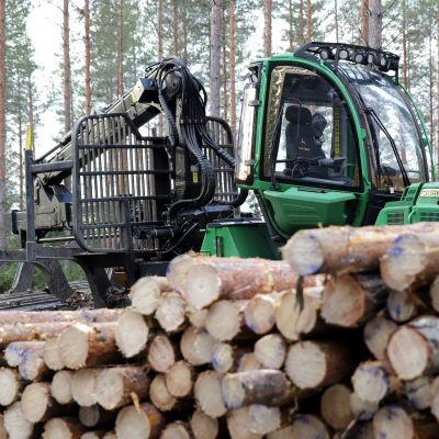 Puunkorjuukone metsässä