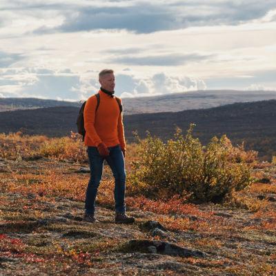 Farkkuihin ja oranssiin puseroon pukeutunut mies kävelee ruskan värjäämässä tunturimaisemassa.