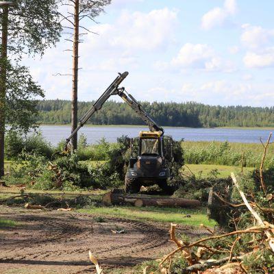 Tykkimäki resort -lomakylän tontti Tykkimäen Aquaparkin vieressä.