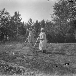 Kvinnor bärgar hö på 1920-talet.