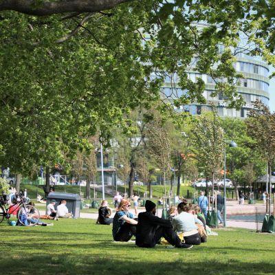 Människor sitter på gräsmattan vid Tokoistranden i Hagnäs i Helsingfors.