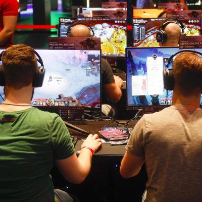 Två män sitter framför varsin dataskärm och spelar. Männen sitter med ryggen mot kameran