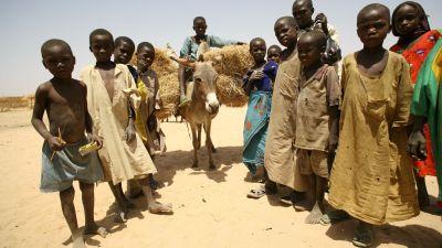 En grupp barn i ökenmiljö.
