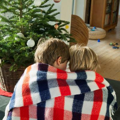 Två små barn sitter under samma filt framför en liten julgran.