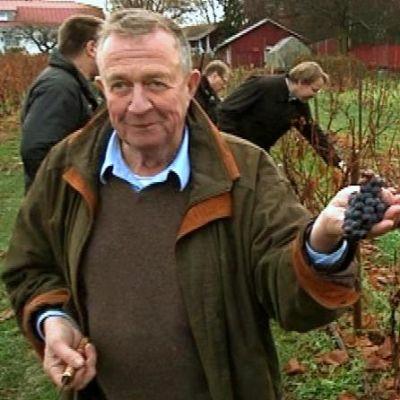 Erkki Lassila esittelee viinisatoaan