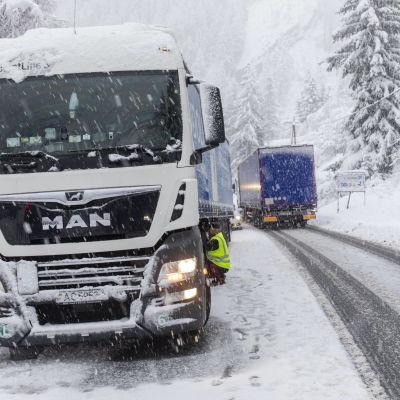 Rekkoja lumisella tiellä.