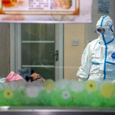 Kina bekräftade på fredag morgon 43 nya dödsfall under det senaste dygnet, alla utom ett inträffade i provinsen Hubei. Bilden är från ett sjukhus i provinshuvudstaden Wuhan.