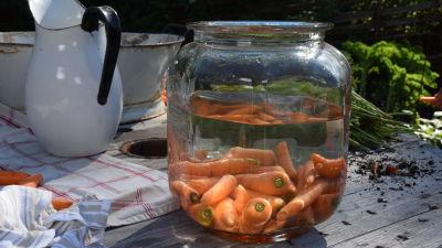 Porkkanaa ja vettä suuressa lasipurkissa pöydällä