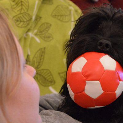 Kuka-koira emäntänsä Virve Sallasen kanssa.