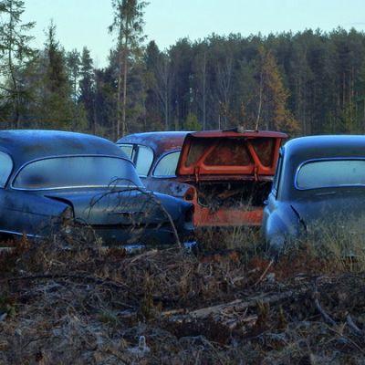 Kolme autonromua ilta-auringossa pikku pakkasella, ympärillä metsää