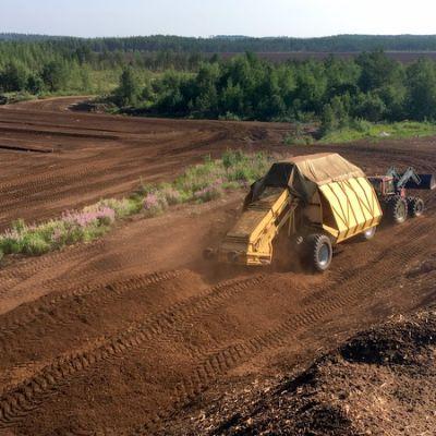 Traktori aumaa turvetta.