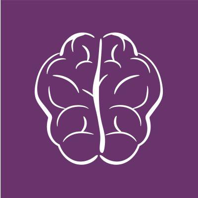 Piirroskuva aivoista.