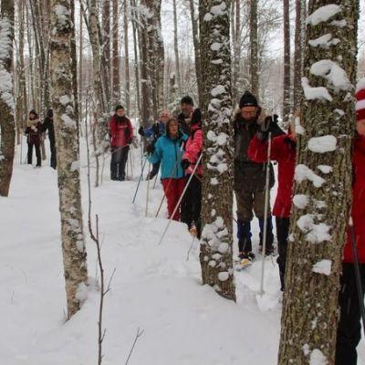 Lumikenkäilijöitä metsässä.