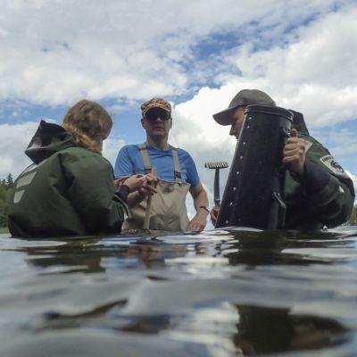 Kartoittajia Puruveden rantavyöhykkeen läheisyydessä vedessä.