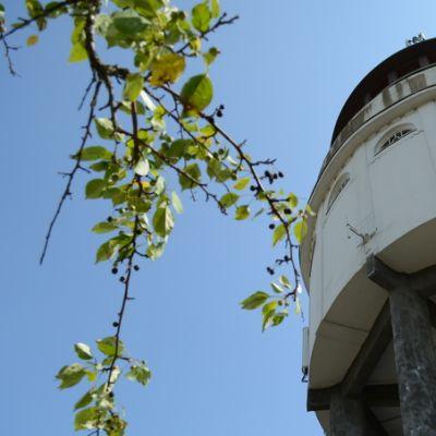 Mikkelin Naisvuoren Näkötorni