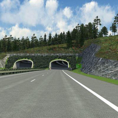 marknadsbackstunneln