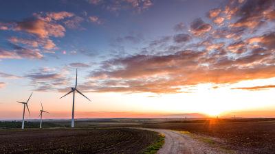 Vindkraftverk i solnedgång vid ett fält och en liten sandväg.