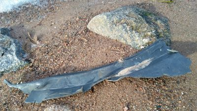 Ett större svart plastföremål ligger i sanden, efter att ha sköljts upp ur havet.