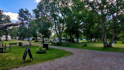 Flera husvagnar parkerade på ett campingområdet.
