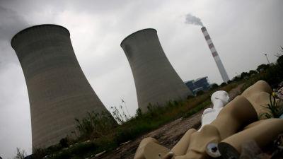 kärnkraftverk i shanghai