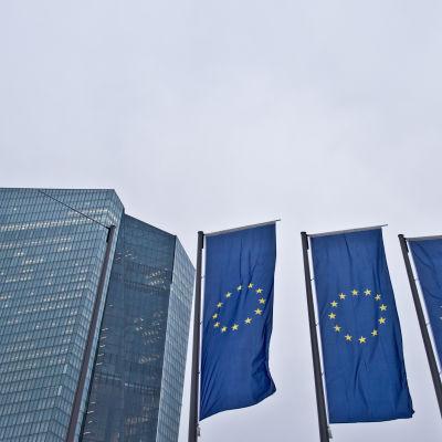 Europeiska centralbankens huvudkontor i Frankfurt.