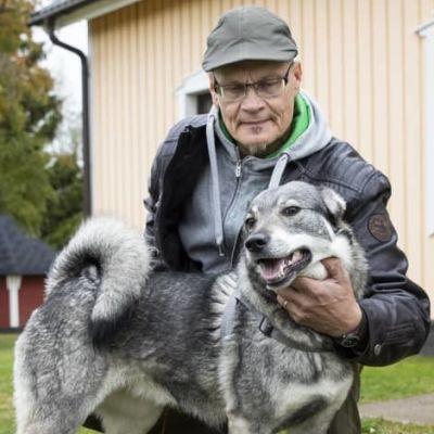 Hunden Tinka blev biten av varg