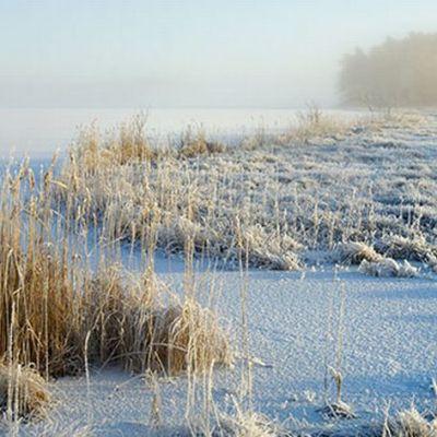 Teijon kansallispuisto talviasussa