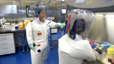 Kaksi virologia työskentelee Wuhanin virologisessa tutkimuskeskuksessa vuonna 2017.