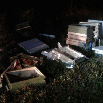 Förstörda bikupor i Norike i Borgå efter björns framfart.